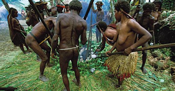 Reportáž z Nové Guineje: Pohřeb jako prasečí korida