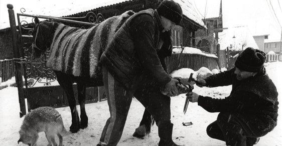 Rumunská župa Maramureš: Jedna z posledních výsep tradičního venkovského života na území Evropy