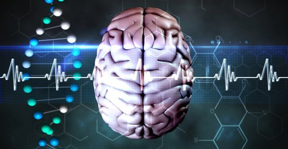 Mozek - ilustrační foto