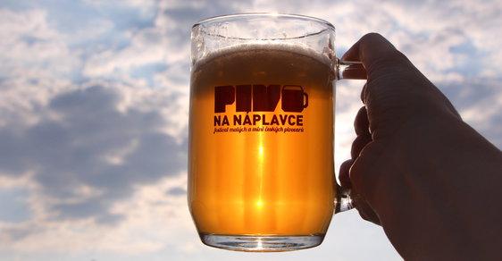 Protidrogová koordinátorka chce snížit dostupnost alkoholu, ale nevadí jí, když Babiš sníží daně na pivo. Pasuje to dohromady?