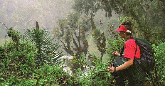 """Čarokrásná """"Kolébka mraků"""" aneb Výstup na vrchol afrického pohoří Rwenzori"""