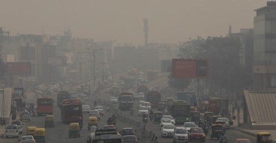 Evropský tlak na zpřísňování ekologických limitů ohrožuje přírodu na dalších kontinentech