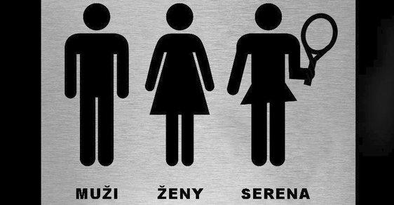 Postupující diferenciace pohlaví