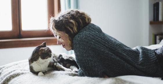 Chování kočky může souviset s osobností jejího majitele.