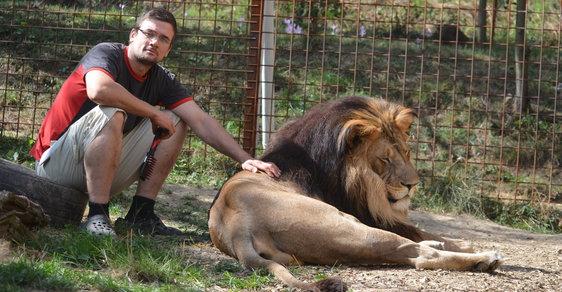 Chovatel Michal P. se svým lvem Fufikem, když ještě oba žili.