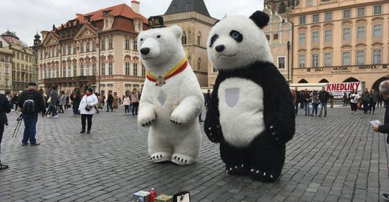 Konec pand v Praze. Magistrát zakázal žebrání v kostýmech přerostlých zvířat i obří bublifuky