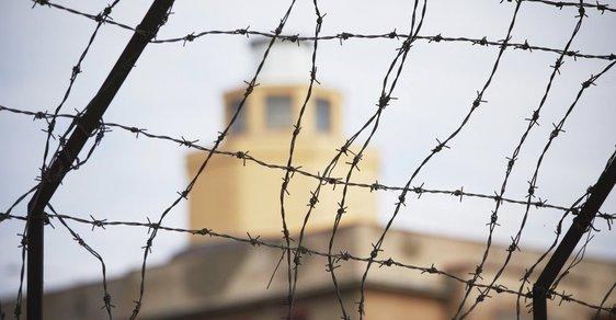 V českých věznicích nouze o drogy nepanuje.