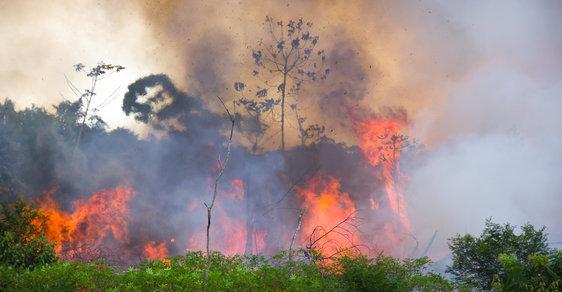 Kácení amazonského deštného pralesa v Brazílii.