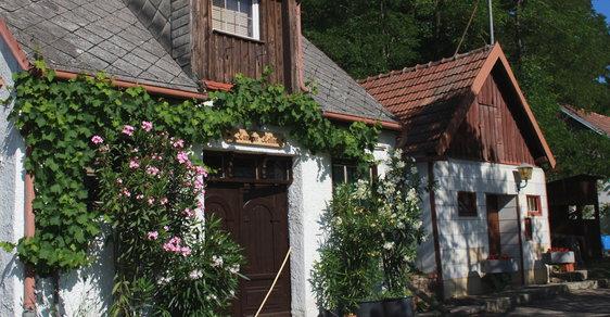 Tip na výlet: Propijte se do pravěku! K rakouským sousedům za Kelty, vínem a netradičním muzeem