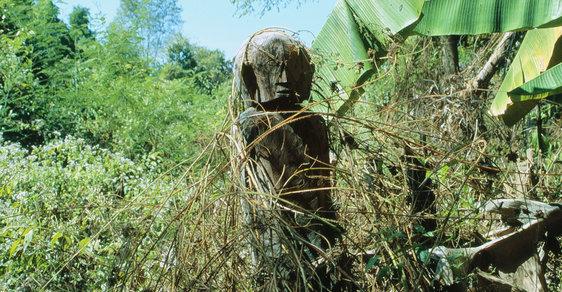 Na cestách po Indočíně, bývalé francouzské kolonii na poloostrově Zadní Indie: Divoký sever Kambodže