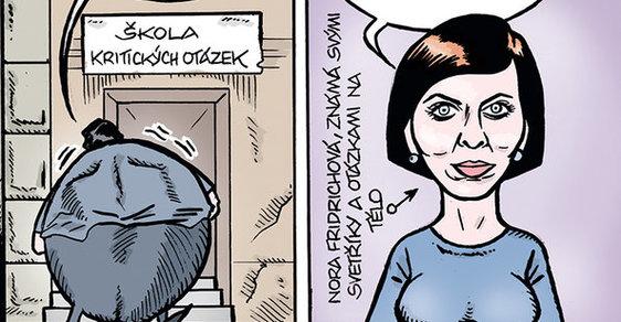 Zelený Raoul: Xaver miluje Noru aneb Divní lidé v radě České televize
