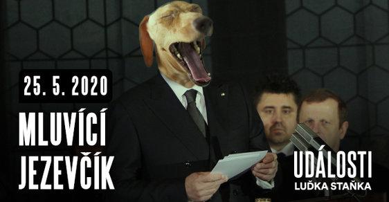 Události Luďka Staňka: Mluvící jezevčík zabil SuperStar, nejvíc ale zabil Babiš