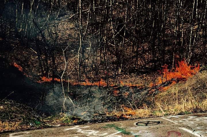 Občas chytne i porost na povrchu a zasahovat musejí místní hasiči.