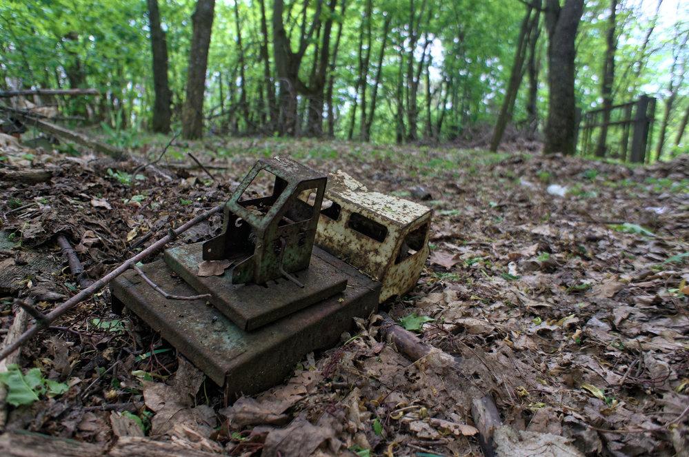 artefakt v lese