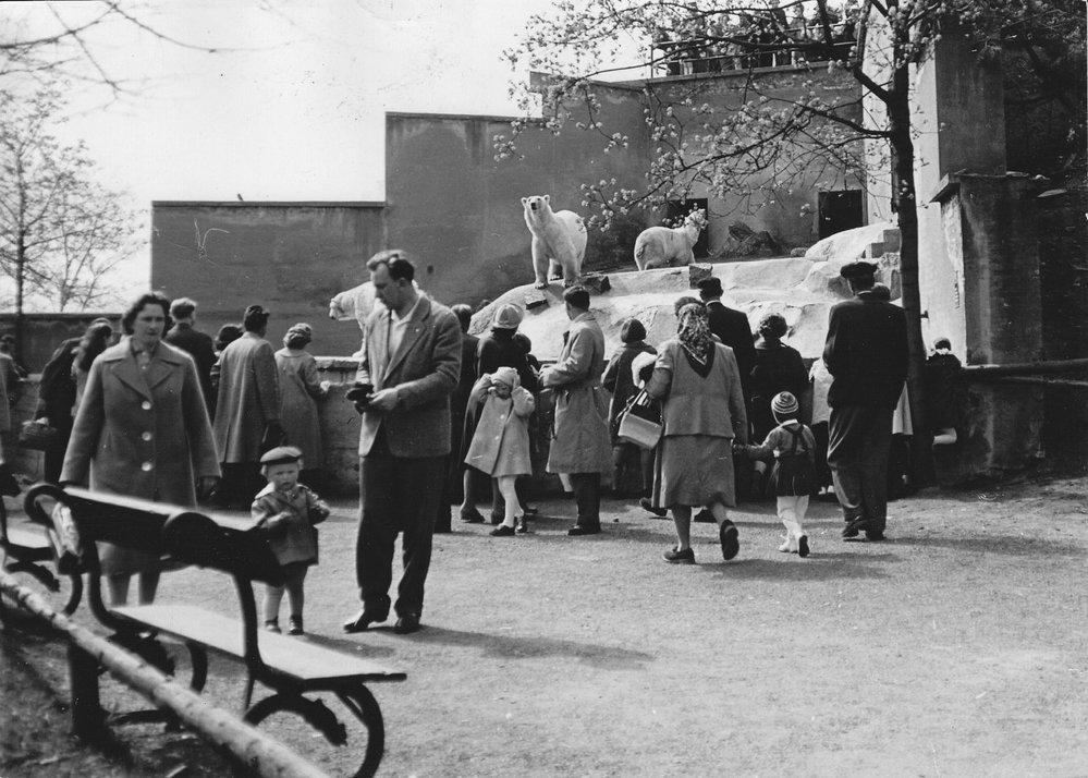 Jak vypadala zoo v minulosti
