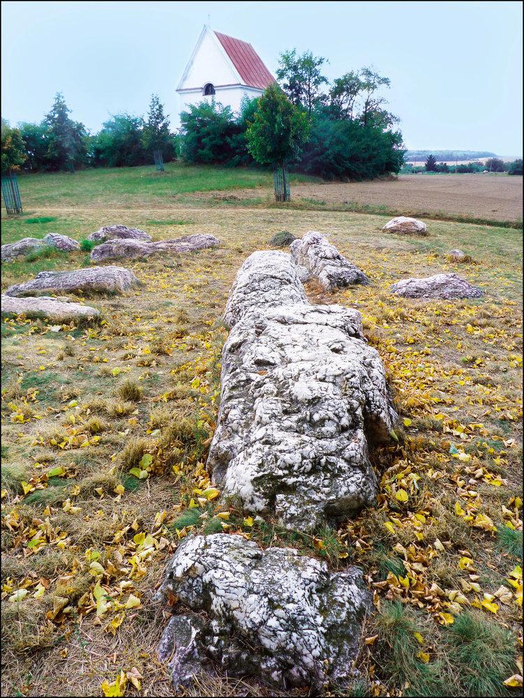 Zkamenělé stádo
