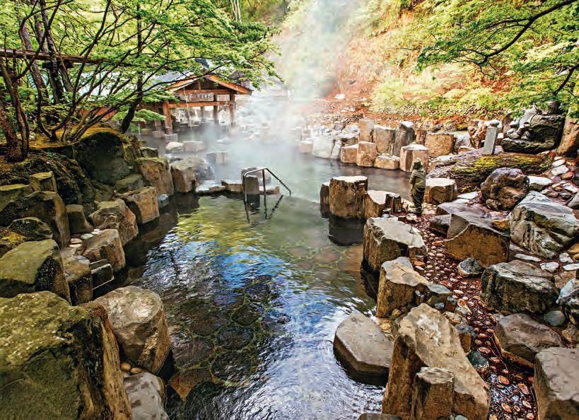 Japonské onseny