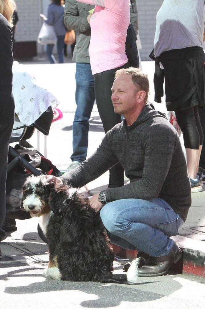 Ian Ziering alias Steve z Beverly Hills 90210