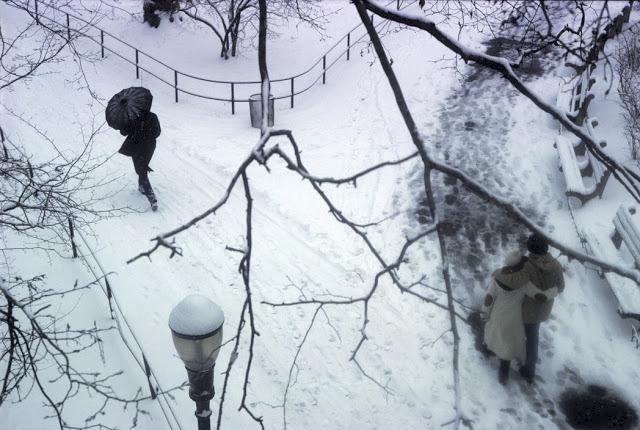 Central Park v zimě.