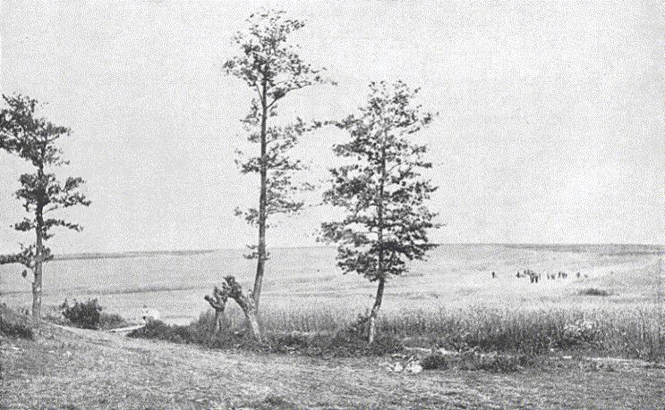 26. Lidice, květen 1945: Lidé na místě masového hrobu, kde se nacházeli zavraždění muži zvesnice.