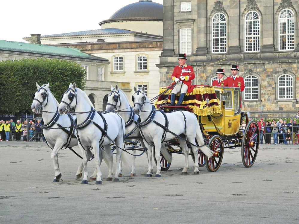 Kladrubští koně jsou chráněni jako kulturní památka České republiky