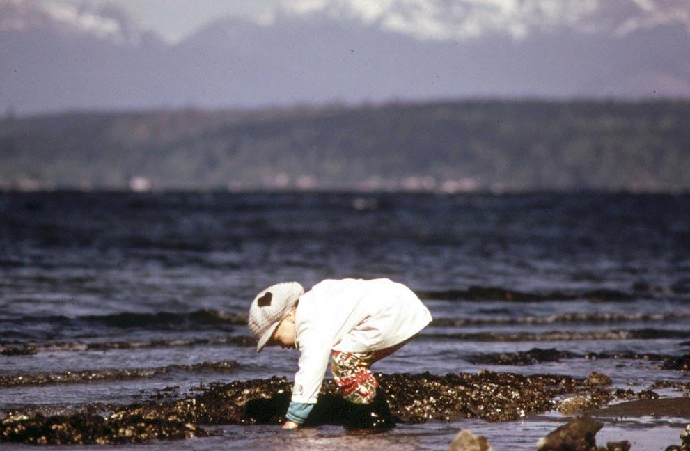 Pláž Alki u Seattlu (květen, 1973).