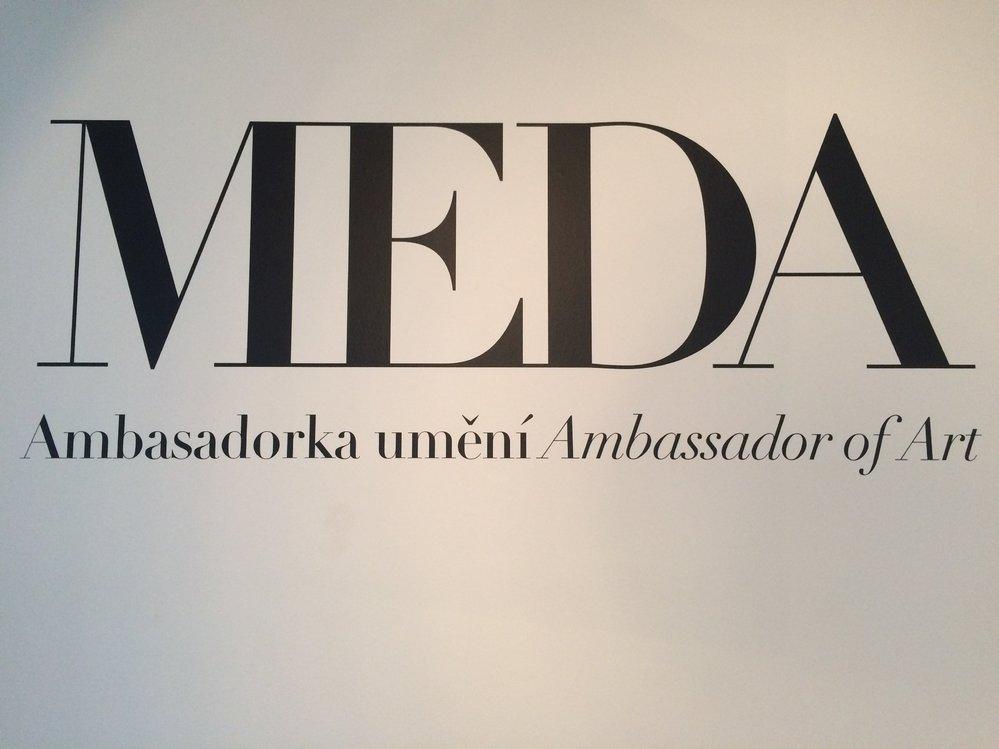 Z výstavy Meda Ambasadorka.