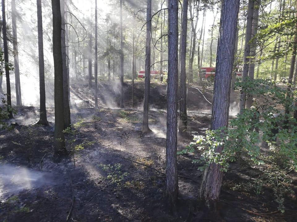 Na Rakovnicku hoří les. Zasahuje osm jednotek hasičů.