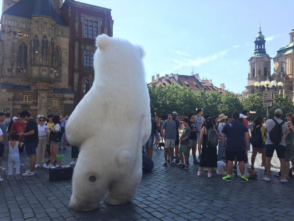Na Staroměstském náměstí přibývají obří kostýmy. Tentokrát tu však pózoval jen lední medvěd.