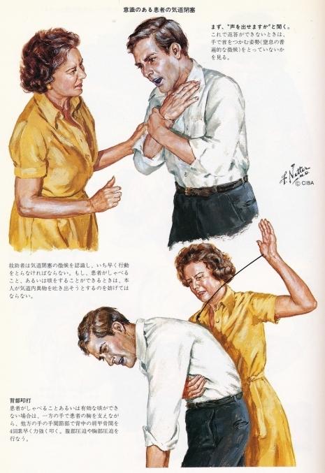 Anatomické ilustrace dr. Franka Nettera