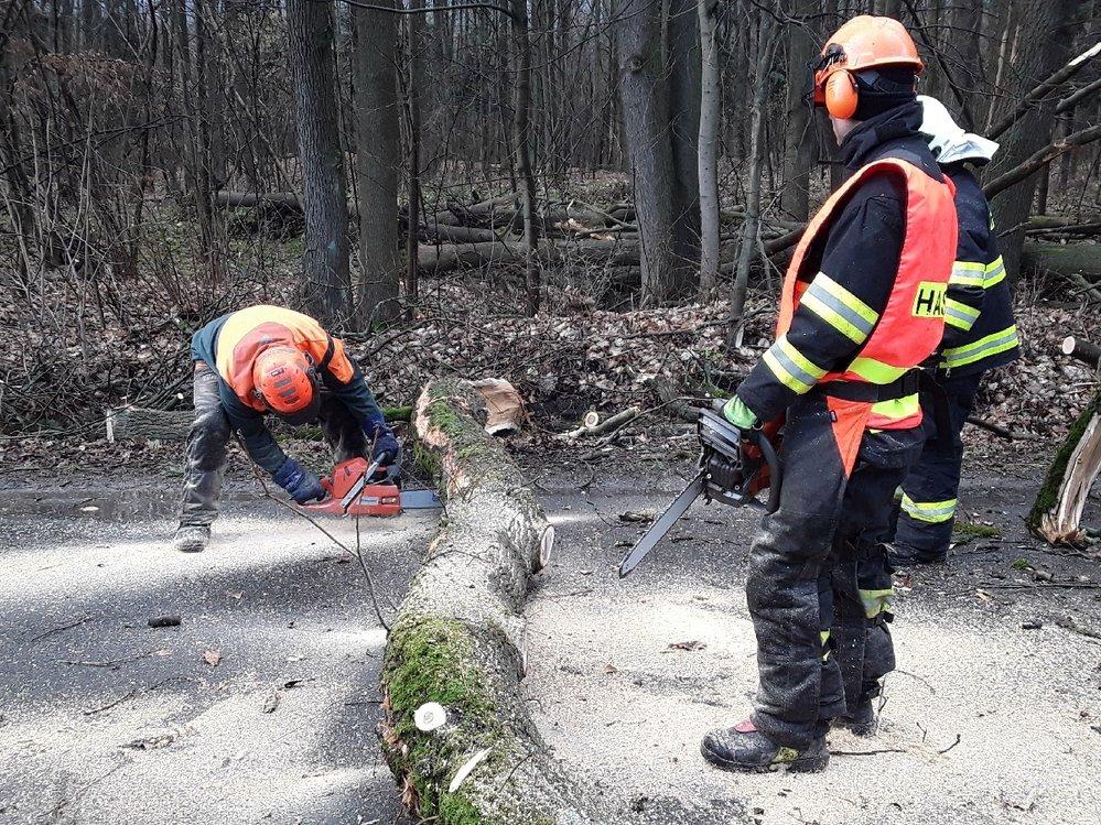 Hasiči v Olomouckém kraji kvůli vichru zasahovali na desístkách míst.