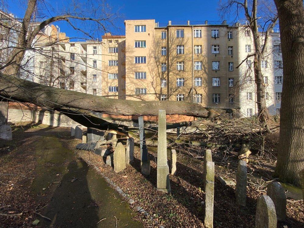 Kvůli bouři Sabine zasahovali hasiči v Praze na několika místech.