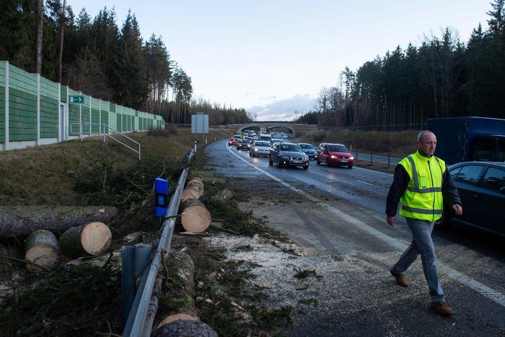 Dopravu na dálnici D3 u Soběslavi na Táborsku 11. února 2020 v ranních hodinách zhruba na hodinu zastavil spadlý strom.