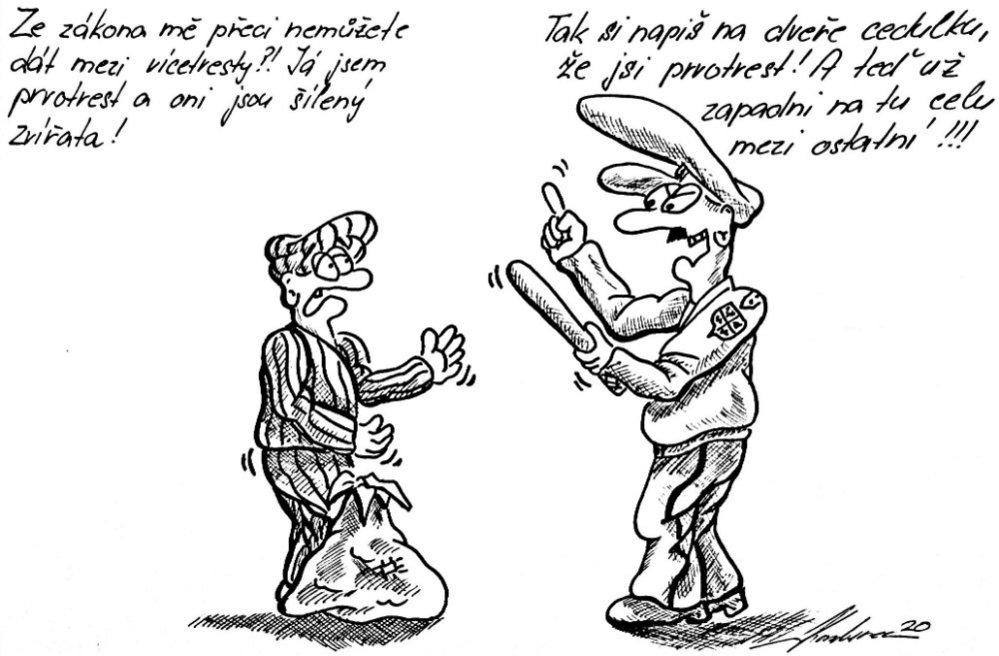 Zápisky českého vězně