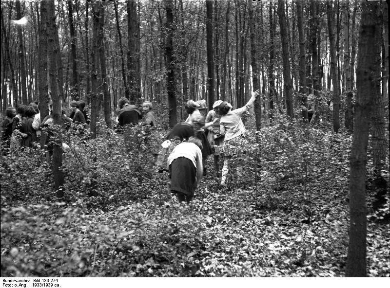 Dívky v lese sbíraly také hmyz.