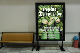 Pepino Temporada Coming Soon!