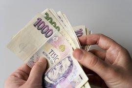 Francouzské mzdy budeme prý mít za 222 let. No a co? To srovnání je pošetilé