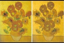 Vlevo je originál obrazu. Vpravo fotografie upravená v programu, který stimuluje vnímání  barvoslepých jedinců.