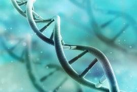 Nový genetický screening odhalí nemoci dítěte ještě před početím. Chceme ale takovou…