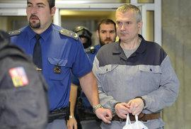 Lihová mafie potrestána, Březina dostal 13 let
