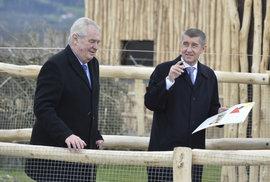 Vláda je nesmrtelná. Pokud ministři za ČSSD podají demisi, Zeman ji nepřijme a Babišova parta pojede dál