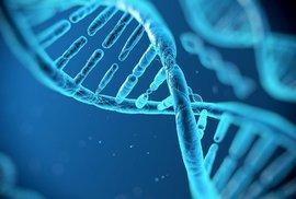 Vědci už umí lidskou DNA získat i z jeskynních sedimentů