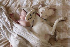 Příručka moderního fotra: Dítě není pes, pokud ho budete krmit granulemi, čeká vás …