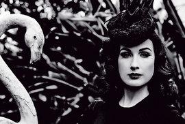 Von Teese je vášnivou sběratelkou starožitného porcelánu a šatů ušitých v 50. letech; jezdí packardem z roku 1939 nebo jaguarem z roku 1965.