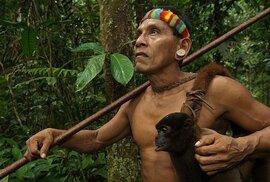 Evoluce v přímém přenosu? Amazonský kmen Huaorani se mění kvůli lovu opic