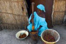 Ženy pracují na zahradách a polích, muži vyrábějí dřevěné uhlí.