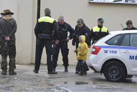 Děti v jihlavské zoo ukopaly plameňáka k smrti