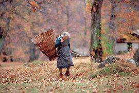 Švýcarská kaštanová renesance: Dříve jídlo chudých, dnes můžete ochutnat kaštanový chléb i šunku