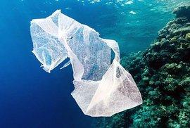 Očima libertariána: Plasty v oceánu