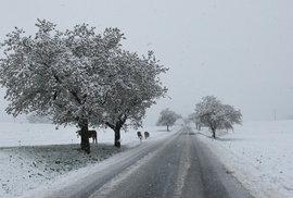 Sníh v dubnu zaskočil Česko